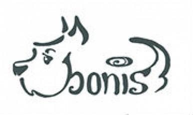 Бонисбонус